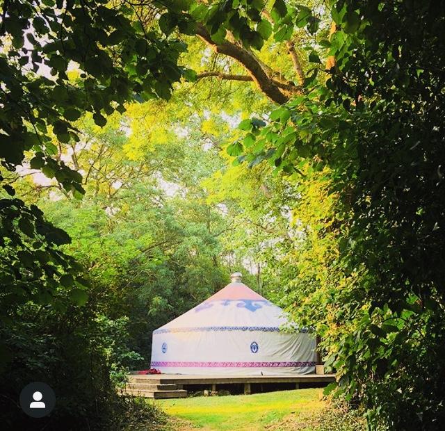 Tilton House Yurt